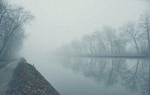 Nebliger Kanal von Goldeneyes