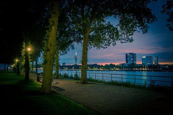 Het Buizenpark van Henri van Avezaath