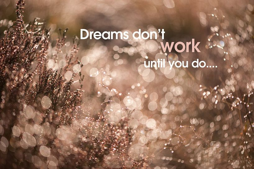 Quote: Dreams don't work until you do... van Andrea Gulickx