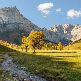 Alpine idyll in Austria van Michael Valjak
