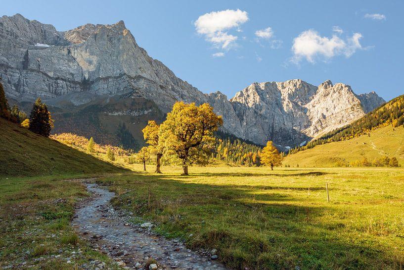 Alpenidyll in Österreich von Michael Valjak