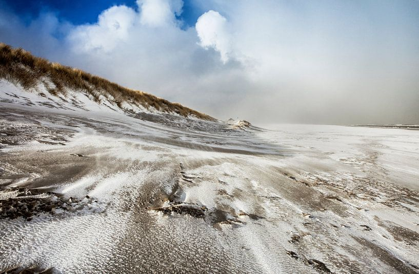 Into the Storm van Nanouk el Gamal - Wijchers (Photonook)