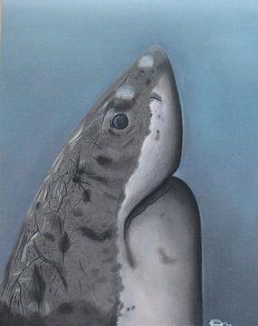 The great white shark (tekening) van Daisy Van der Zijden