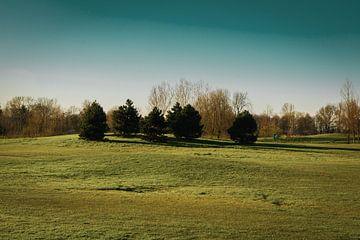 Golfbaan Delfland van Paul Poot