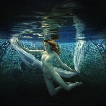 Nacht Zwemmen, Dmitry Laudin van 1x