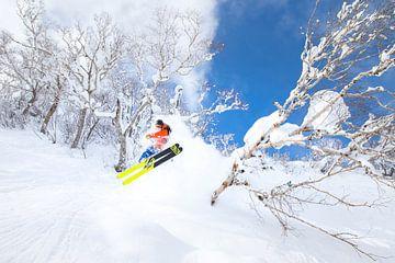 Ski Poudre Extrême Niseko Hokkaido Japon sur Menno Boermans