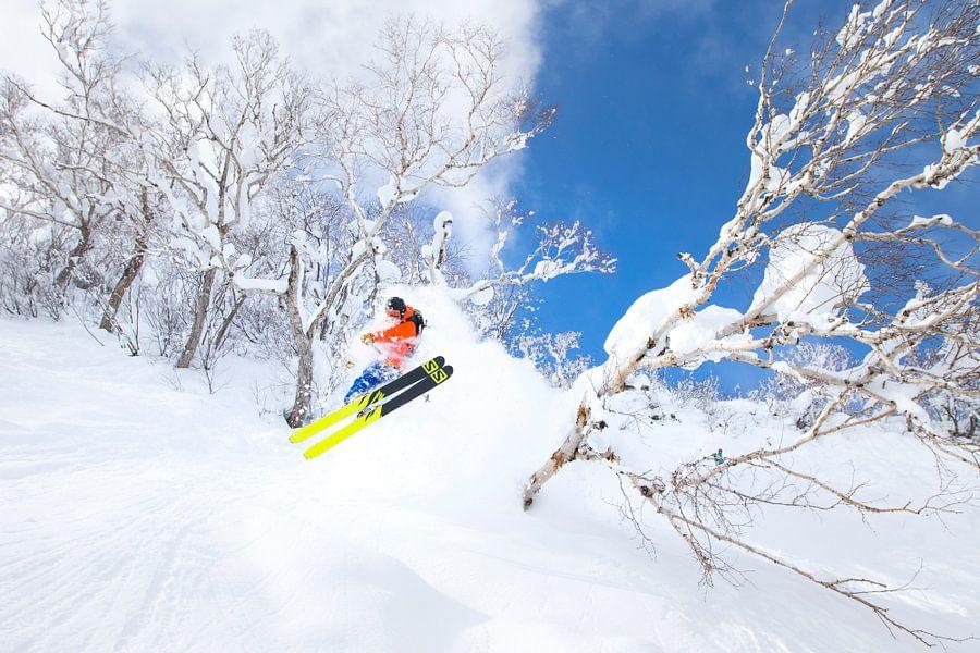 Extreme Powder Ski Niseko Hokkaido Japan van Menno Boermans