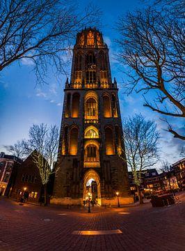 De Dom in Utrecht sur Roy Poots
