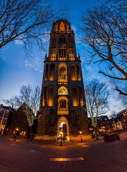 De Dom in Utrecht van Roy Poots