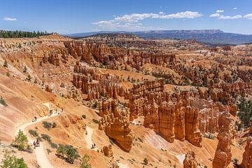 Uitzicht over Bryce Canyon van Reis Genie