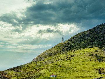 Aussichtsturm auf einem grünen Beet von Greet Thijs