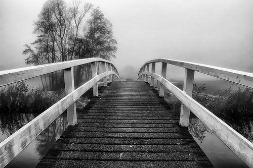 de brug zw-w van