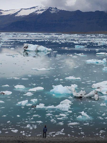 Jokulsarlon IJsland van Wilco Berga