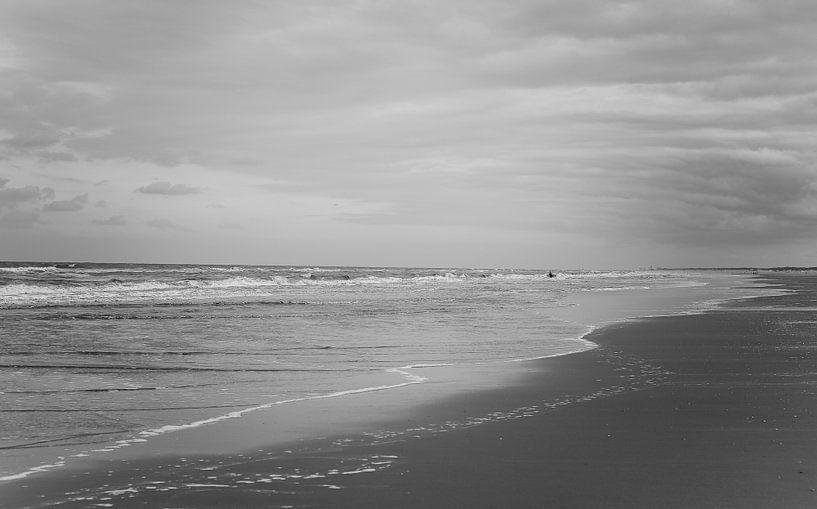 Eenzame surfer van Nicole Boekestijn