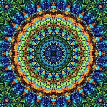 Mandala kleurrijk schil van Marion Tenbergen