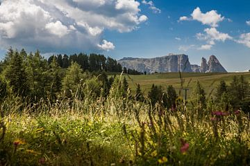 Zuid-Tirol Alpe di Siusi van Martina Weidner