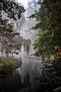 Blick durch den Park im Nebel in Voorburg von Michel Groen