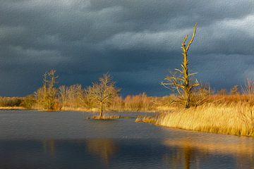 Spel van zon en wolken (olieverf) van Karla Leeftink