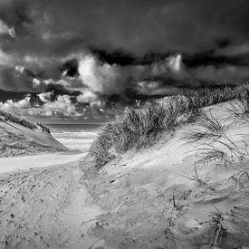 strandopgang met de duinen en de Noordzee van eric van der eijk