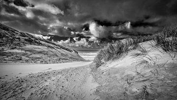 Strandzugang mit den Dünen und der Nordsee von eric van der eijk