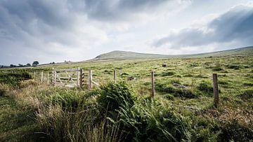 Cumbria landschaft von Freddy Hoevers