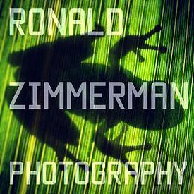 Ronald Zimmerman avatar