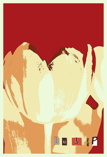 Tulip van Rosi Lorz