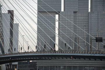 Rotterdam sur Tim Vlielander