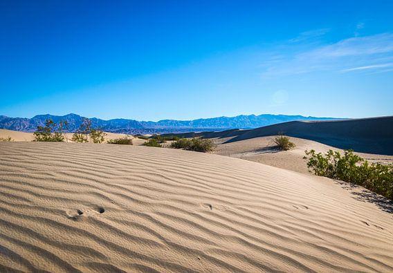 Sand dunes in Death Valley  van Ton Kool
