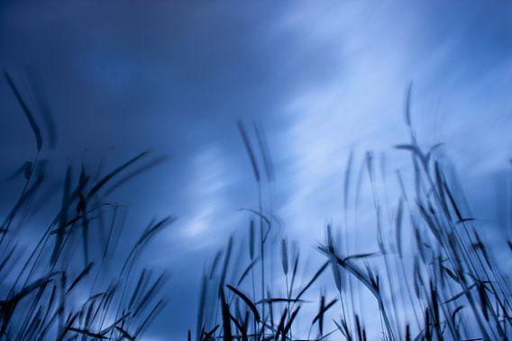 Krachtige wolken laten het perceel bewegen.