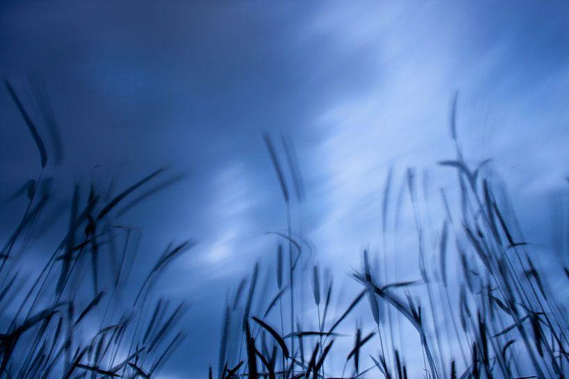 Krachtige wolken laten het perceel bewegen. van Emma Westers