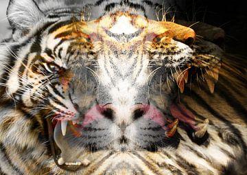 Lehre mich Tiger von Andreas Schulte