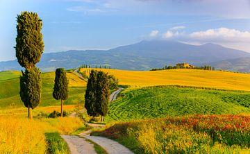 Agriturismo Podere Terrapille. Toskana, Italien