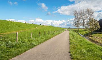 Lange weg in Nederlandse polder van Ruud Morijn