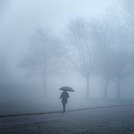 Wandelaarster in de mist van Jan van der Knaap