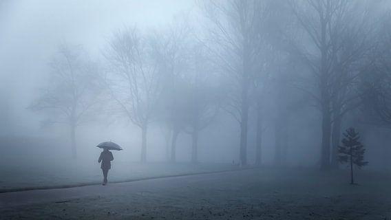 Wandelaarster in de mist