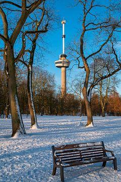 Der Euromast - Winter 4 von Nuance Beeld