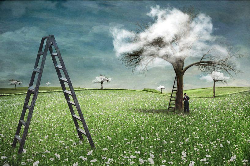 Traumbäume von Pat Desmet