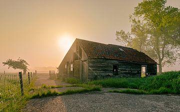 Abgelaufene Scheune eines Morgens mit Nebel in Nordholland von Sven van der Kooi