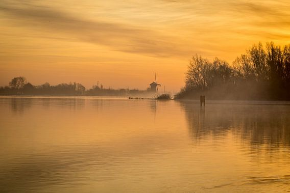 Gouden ochtend bij zonsopkomst aan het meer van Marja Spiering