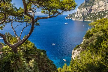 Uitzicht op Punta de Masullo, Capri van Christian Müringer