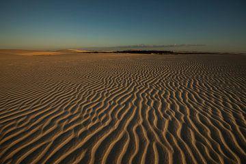 Desert sur Leon Doorn
