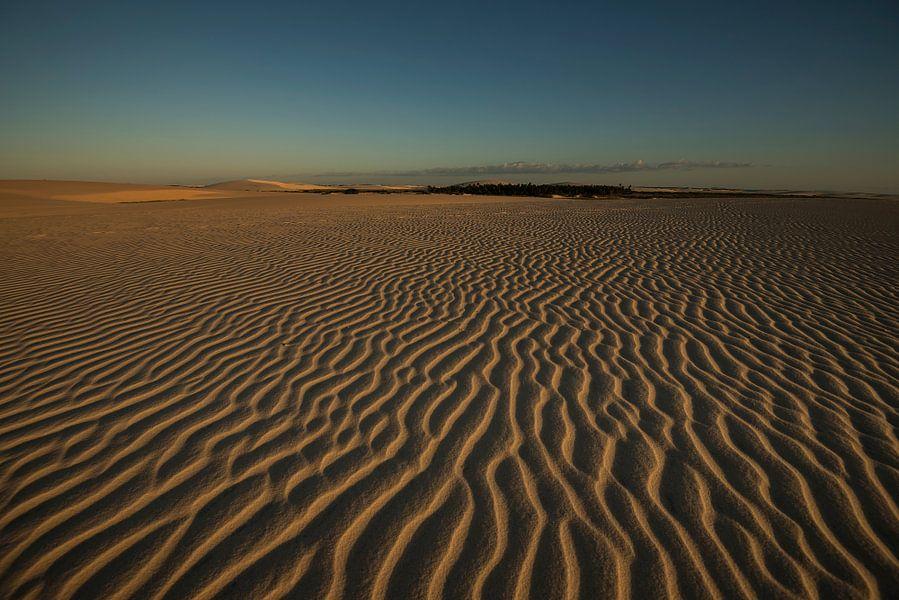Woestijn van Leon Doorn