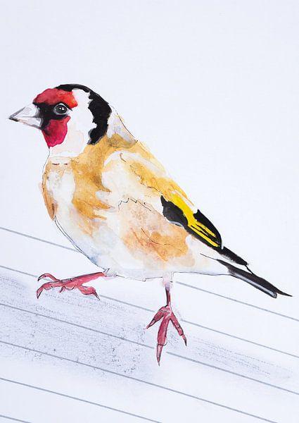 Der Putter, Vogel-Illustration von Angela Peters