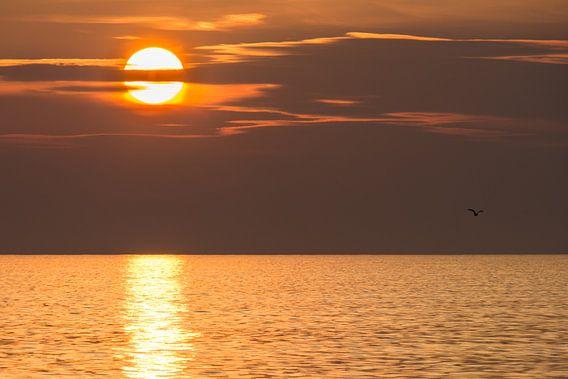 sunset @ sea van B-Pure Photography