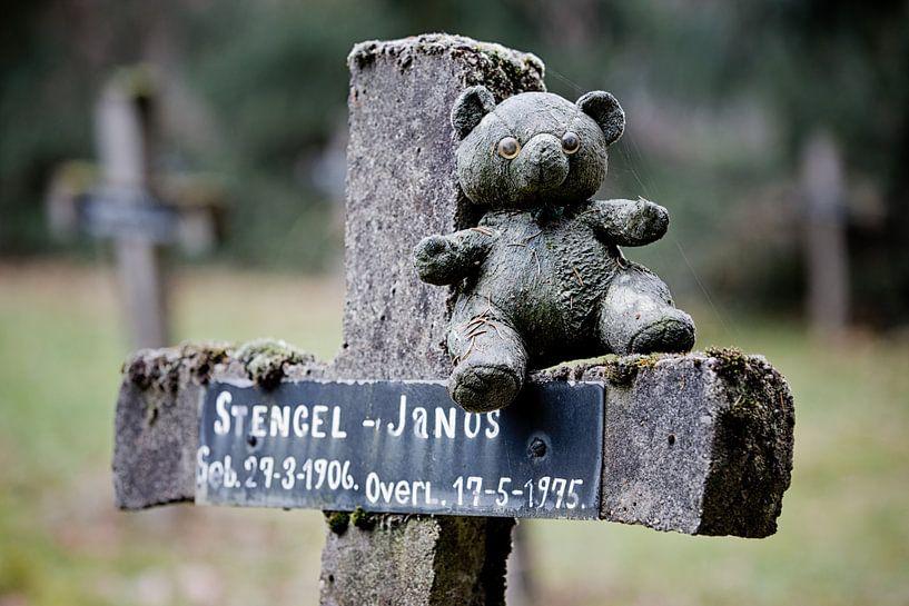 Forgotten graves somewhere in a forrest von Alfons Postma