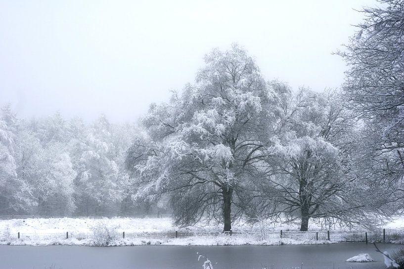 meertje met bomen van Alfred Stenekes