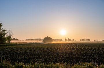 platteland part 2 van Tania Perneel