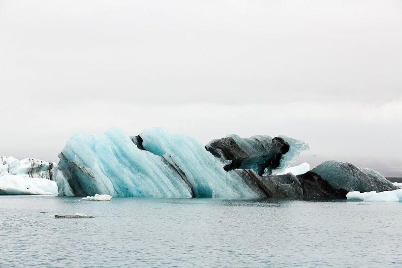 Jökulsárlón Glacier Lagoon met meeuw sur Anneke Hooijer