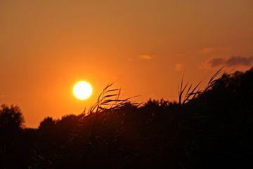 Die Sonne geht unter von Kirsten L.